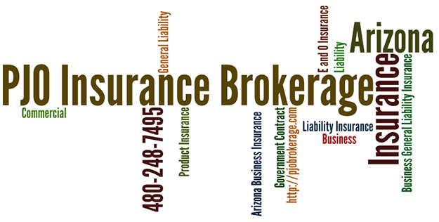 General Liability Insurance for Businesses Interested in Government Contracting Wordle
