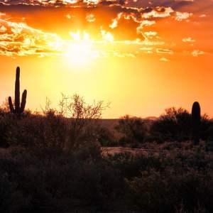 Environmental Impairment Las Vegas Coverage