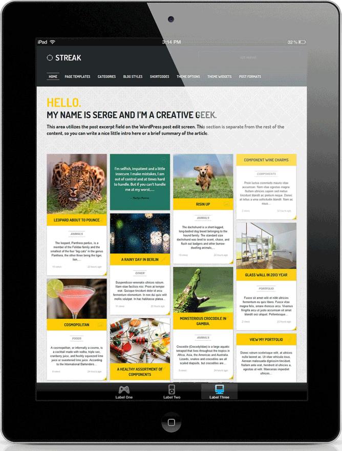wordpress website builders in delhi ncr rendering responsive designs