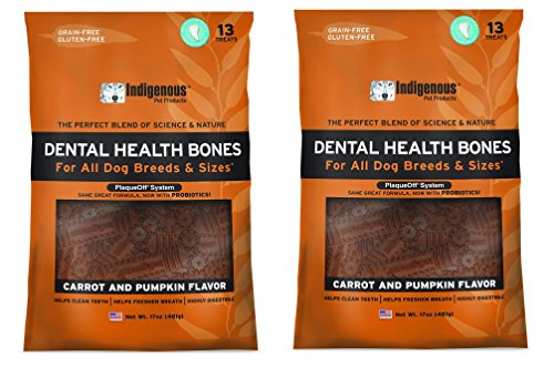Indigenous Dental Health Bones Carrot and Pumpkin Flavor - 17oz by Indigenous