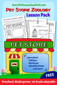 This beginning zoology lesson is perfect for introducing younger students to animal classifications and facts. Print out the free lesson pack and pair with a trip to your local petstore for an easy and fun science lesson for preschool, kindergarten and first grade kids.