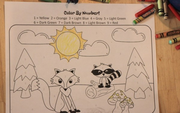 Color By Numbers Forest Animals