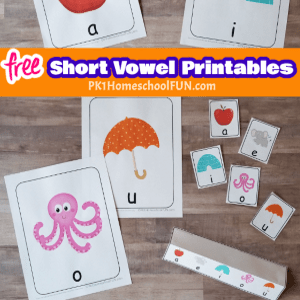 Your child's reading adventure begins with learning the short vowel sounds. Here are 10 tips for teaching the short vowels to your beginning reader that will help you keep the excitement in reading.