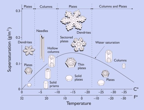 Emoto's Crystal Water