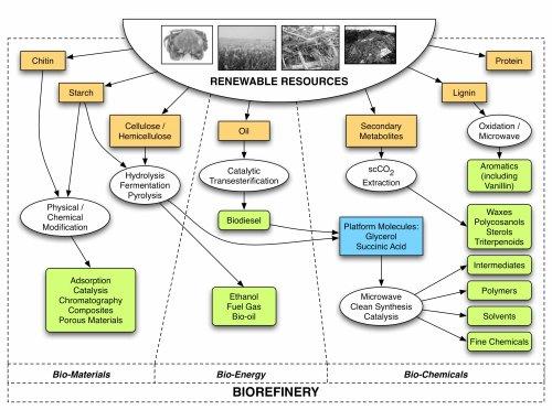 Bio Refinery Concept Map