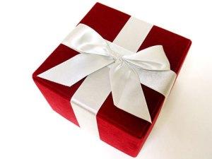 christmas-gift1[1]