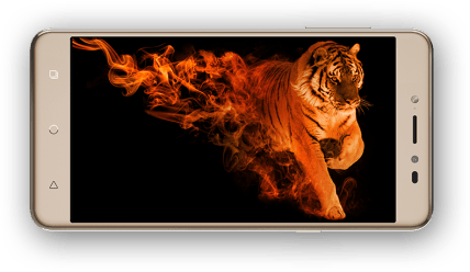 coolpad-note-5-gold-front-display
