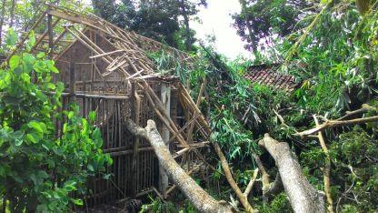 Rumah kena Pohon Tumbang