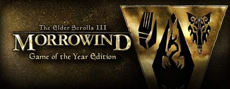 The Elder Scrolls III Morrowind exsite