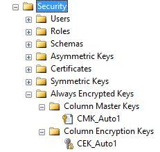 alwaysencrypted8