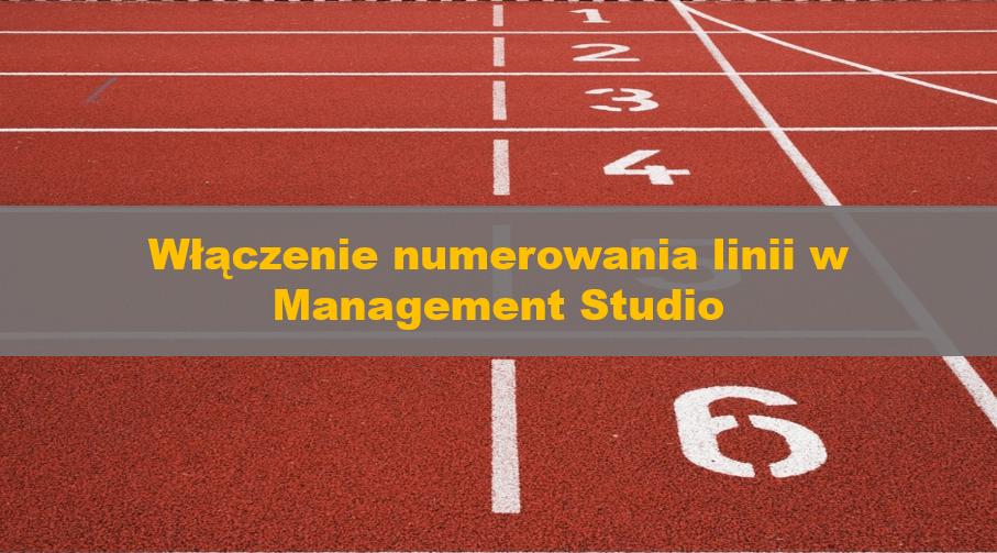 NumerowanieLiniiWSSMS_00