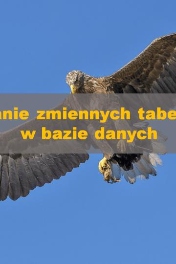 zmienne_tabelaryczne_banner