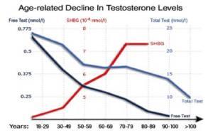 Wykres przedstawia spadek the całkowitego oraz wolnego testosteronu oraz wzrost SHBG.