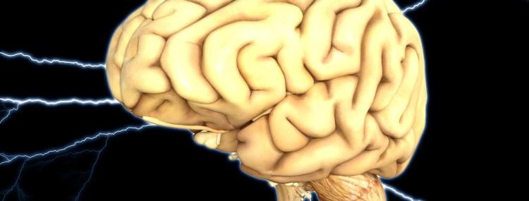 rozwijanie mózgu