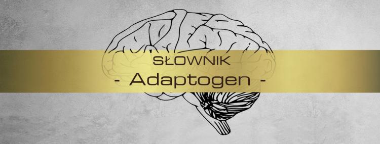 Adaptogen - definicja