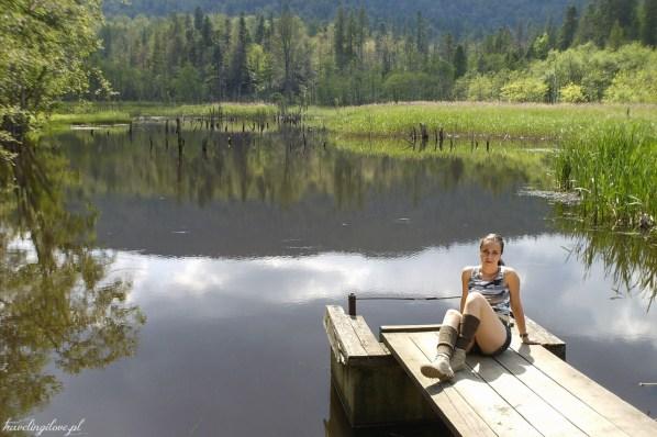 Jeziorko bobrowe koło Huczwic