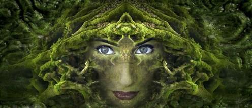Bewustzijn, jonge vrouw, hoofd, mos, fantasie, foto Pixabay