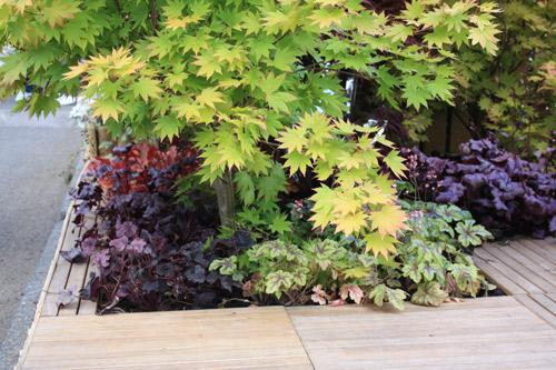 jardin zen du debutant place des