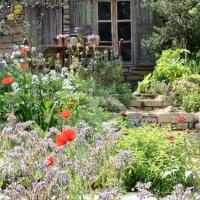 Jardin méditerranéen: inspiration à suivre