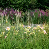 Look moderne pour un jardin frais