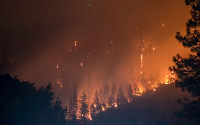 Placer Community Foundation Board Members and Donors Give $24,200 for Camp Fire Relief
