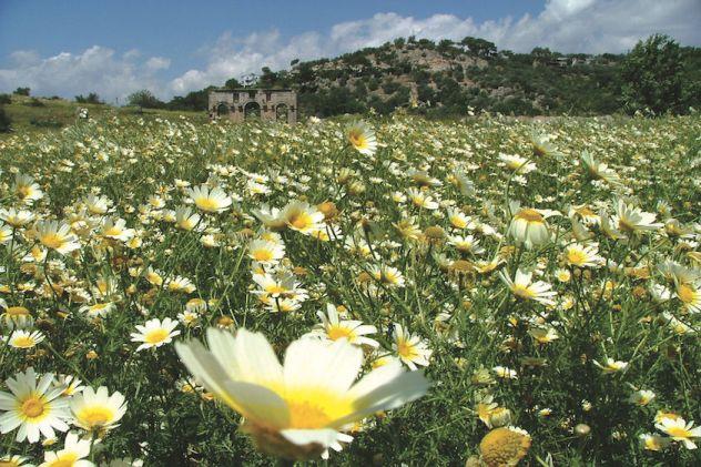 Historical Patara, situated along Turkey's Lycian Way (photo: Kate Clow)