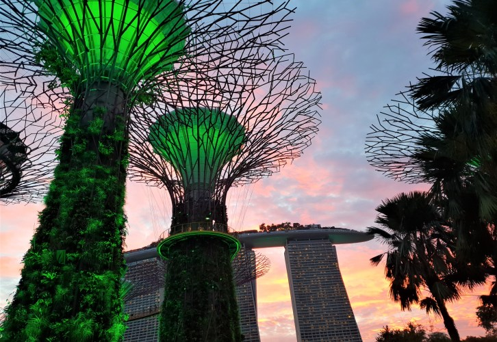 SuperTrees, Gardens by the Bay, Singapore, photo by placescases.com