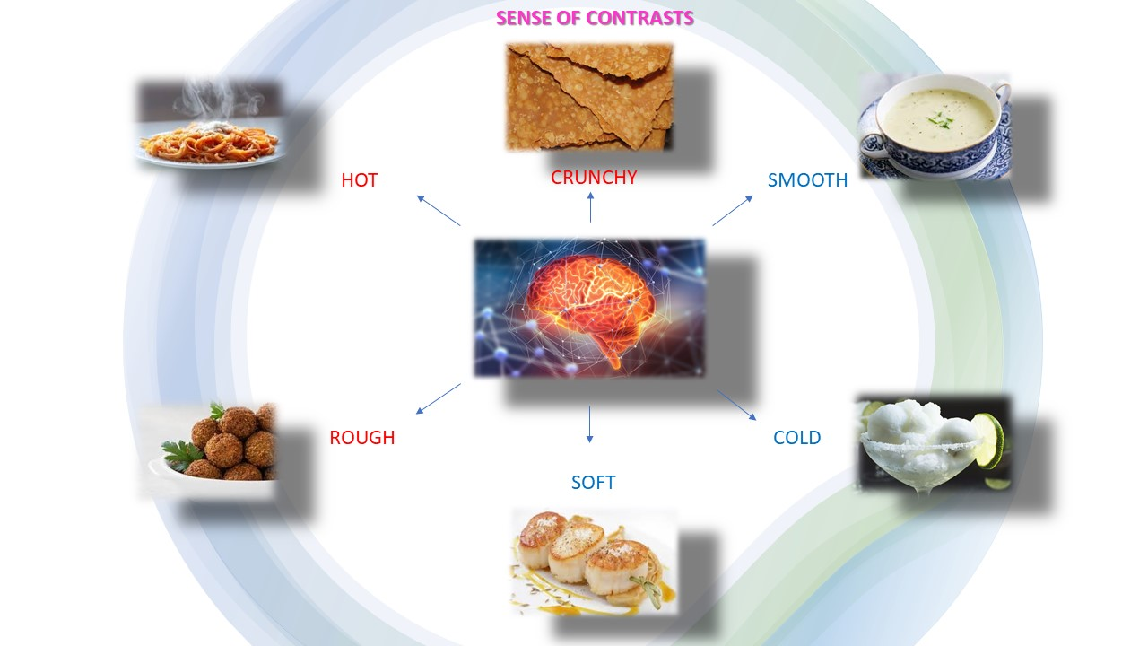 Diagram of contrasts, sense of touch, by placescases.com