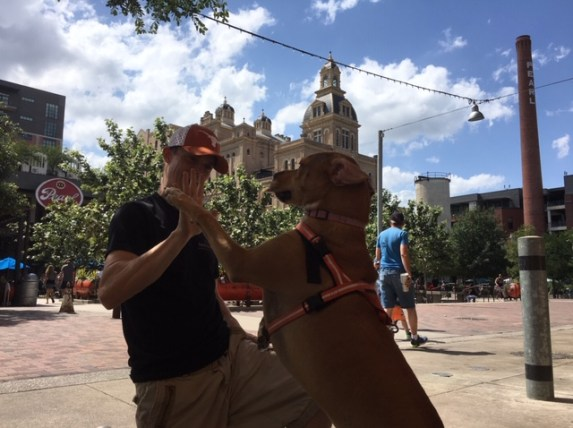 Best things to do in San Antonio, include a high five at the Pearl with a dog.