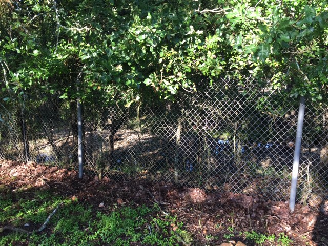 The creek beyond the fence is accessible if you bypass the unmaintained chainlink fence.