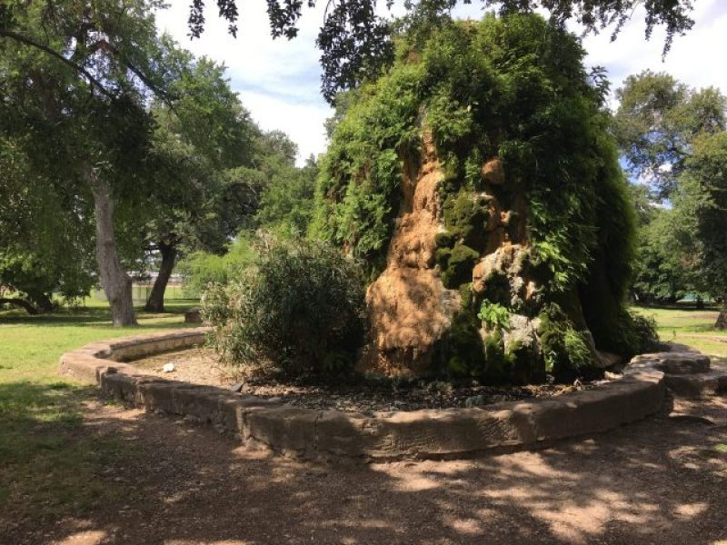 The spring at San Pedro Springs park in San Antonio.