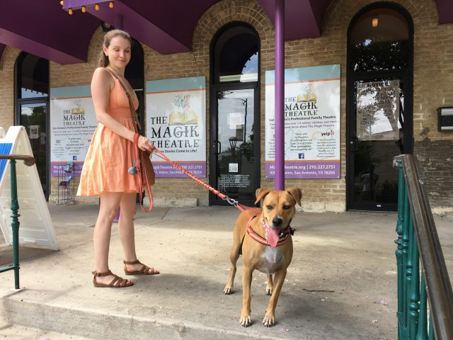 A Dog Friendly Hemisfair Adventure - Where All People Come to Meet