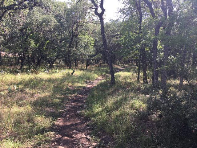 Dog friendly natural trails at San Antonio's McAllister Park.