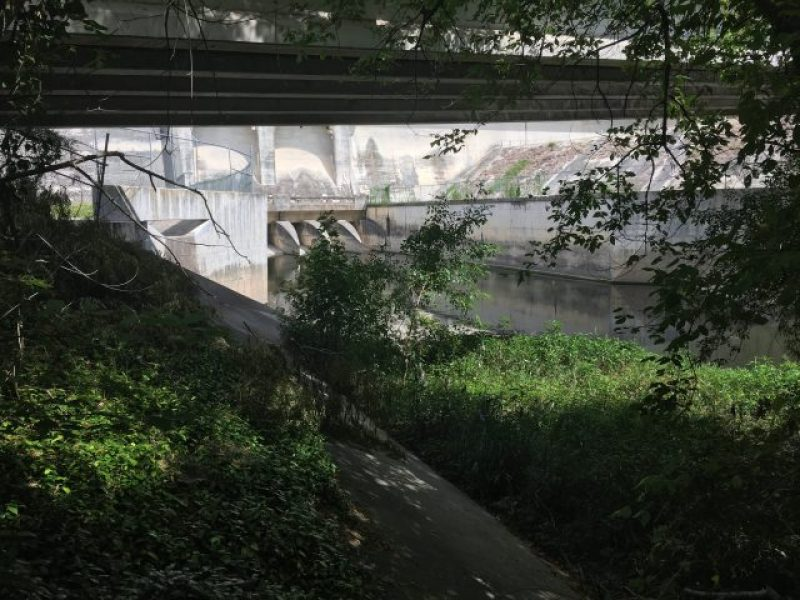 View of Olmos Dam from Headwaters Sanctuary.