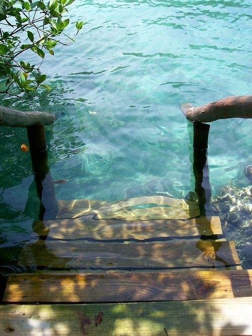 summer vacation memories at the lake