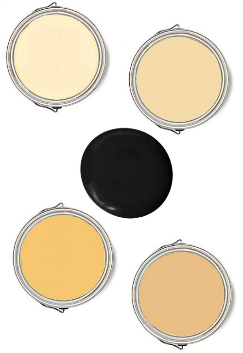 yellow-black-color-combination