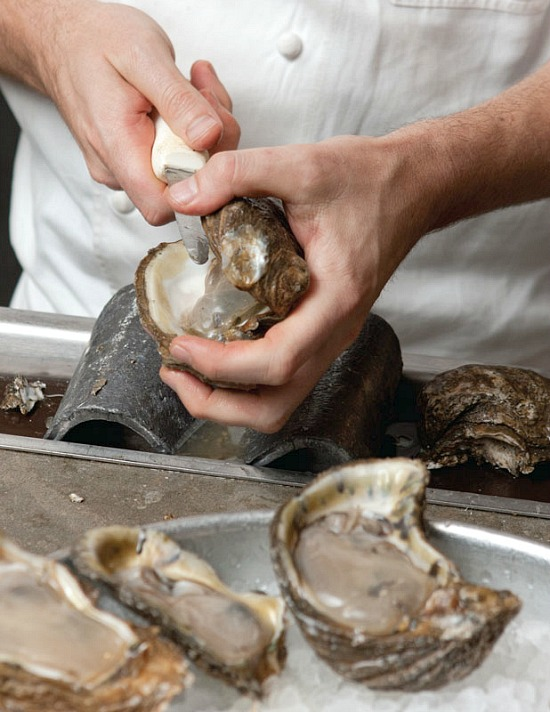 Oyster-shuck