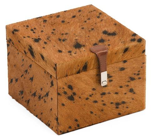 Haircalf Storage Box