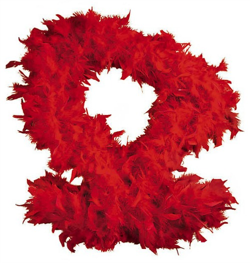 red-feather-boa