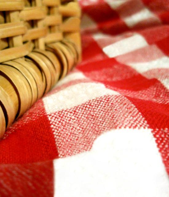 picnic basket blanket red white