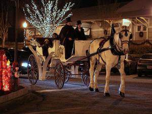 carriage-rides-downtown-xmas