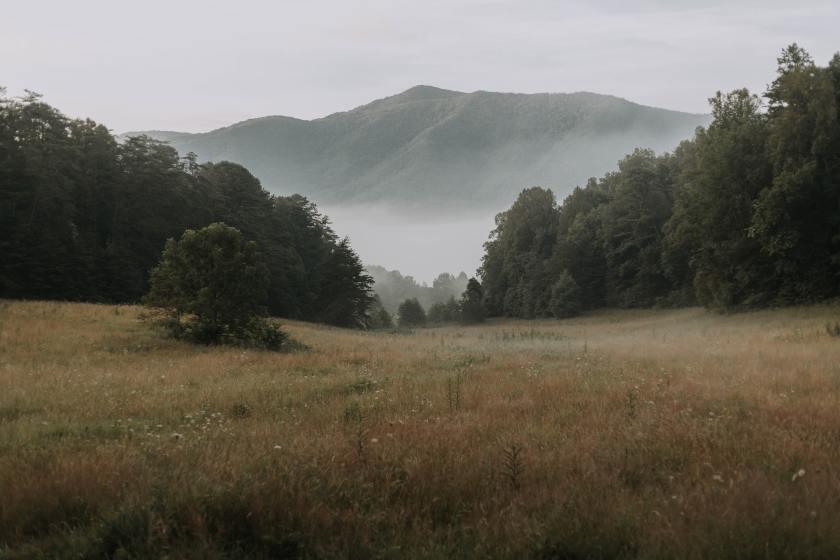 Willa Smoky Mountains