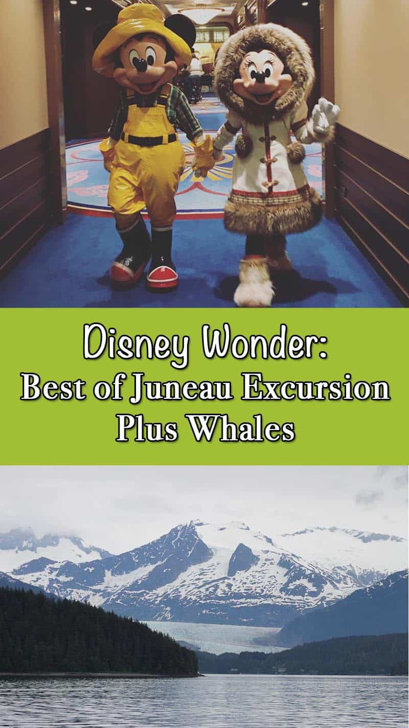 Read Plaid Shirt Yoga Pant's excursion from the Disney Wonder in Juneau. I saw a humpback whale and Mendenhall glacier while in beautiful Alaska!