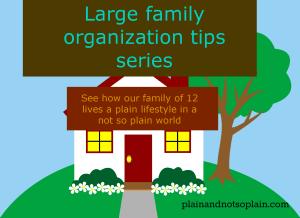 large family organization series