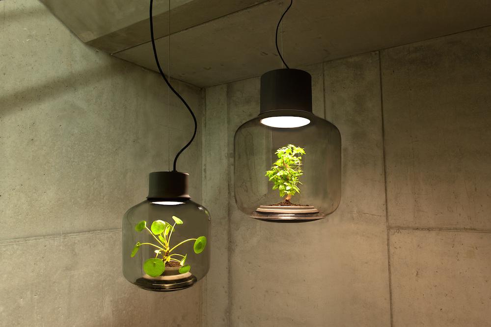content_plain-magazine-plant-lamp-°1