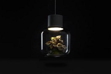 content_plain-magazine-plant-lamp-05