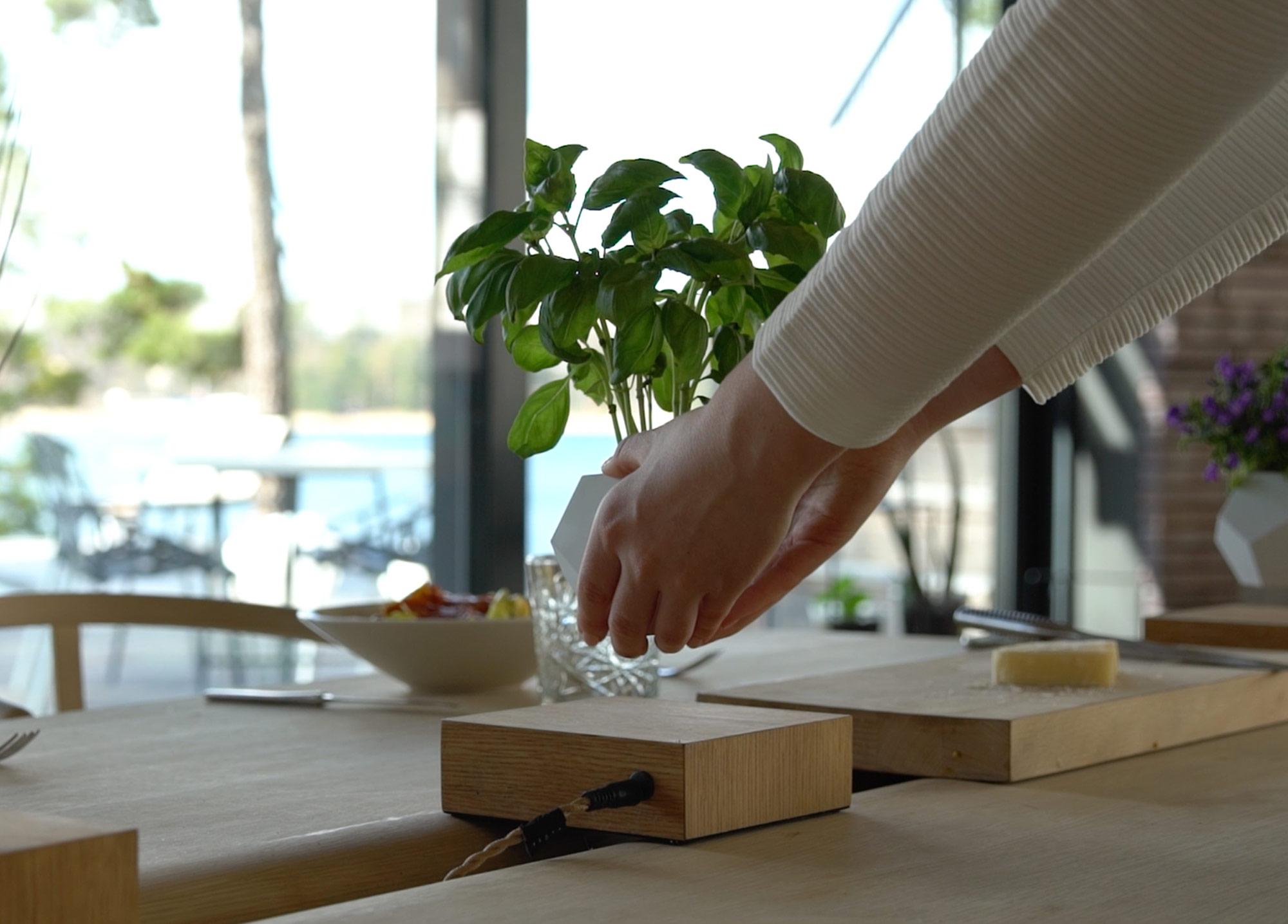 Make your plants float in this zero-gravity planter - PLAIN