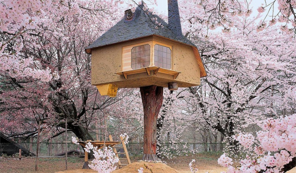 content_plain-magazine-treehouses-japan-01