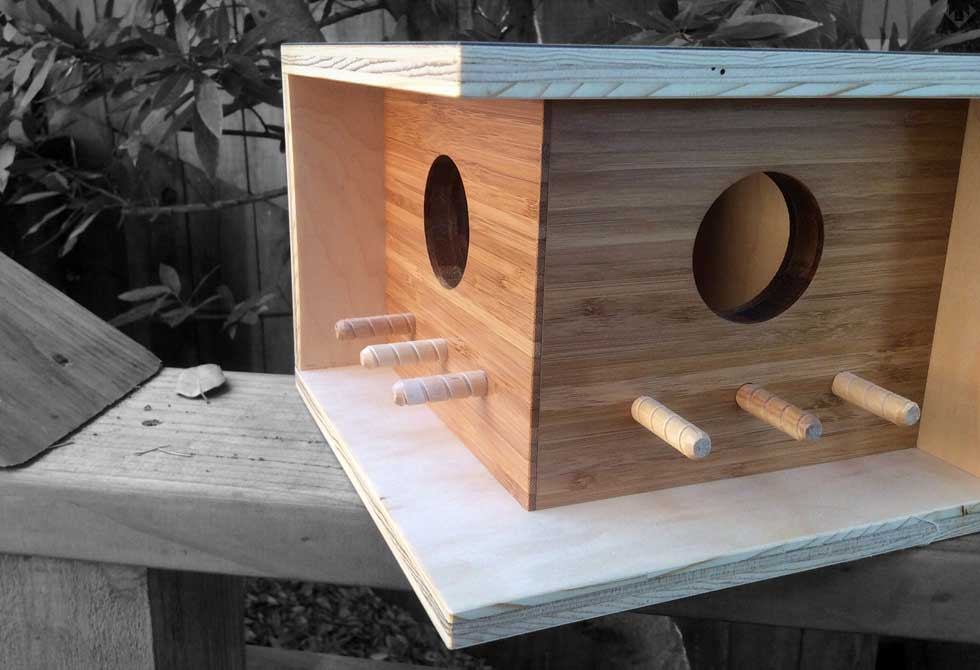 Birdhouses Architecture Douglas Barnhard
