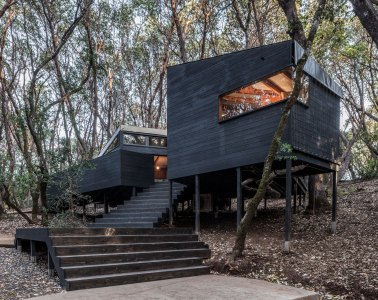 Forest House Envelope A+D Architecture